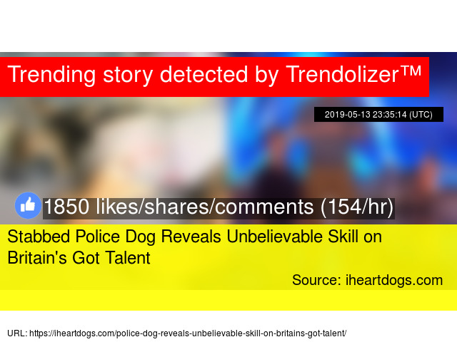 Stabbed Police Dog Reveals Unbelievable Skill on Britain'